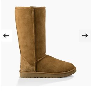 Authentic UGG Chestnut Tall Boots